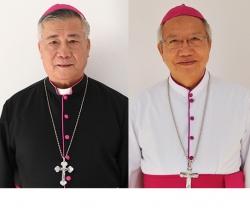 Thiết lập giáo phận Hà Tĩnh